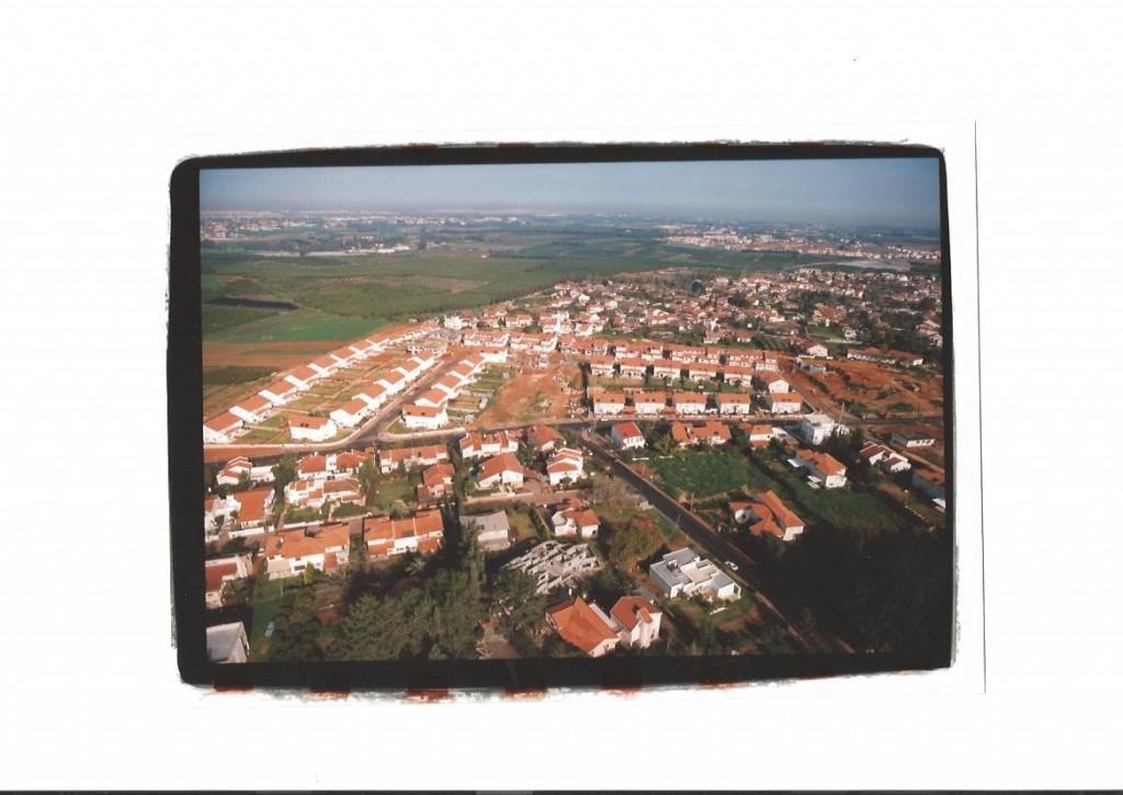 גבעת הנרקיס